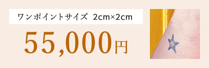 ワンポイントサイズ 2cm×2cm 54,000円